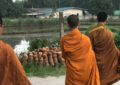 "Buddhist ""Eco-monks"" Work to Protect Thailand's Environment"