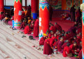 Larung Gar Nuns Push for Gender Equality in Tibetan Buddhism